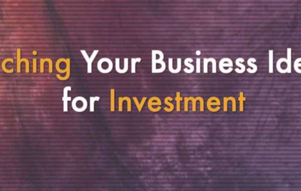 Pitching Your Business Ideas for Investment